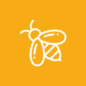 TR Buzz